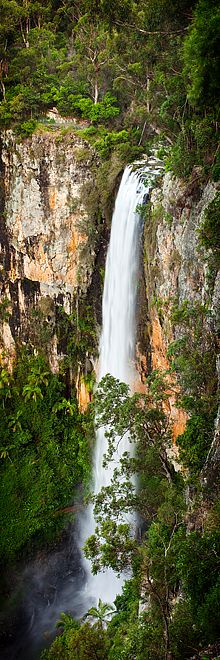 Waterfall in Springbrook National Park, Queensland, Australia; on the Gold Coast of Australia, 78 km (48.5 miles) south of Brisbane; part of the World Heritage site Central Eastern Rainforest Reserves