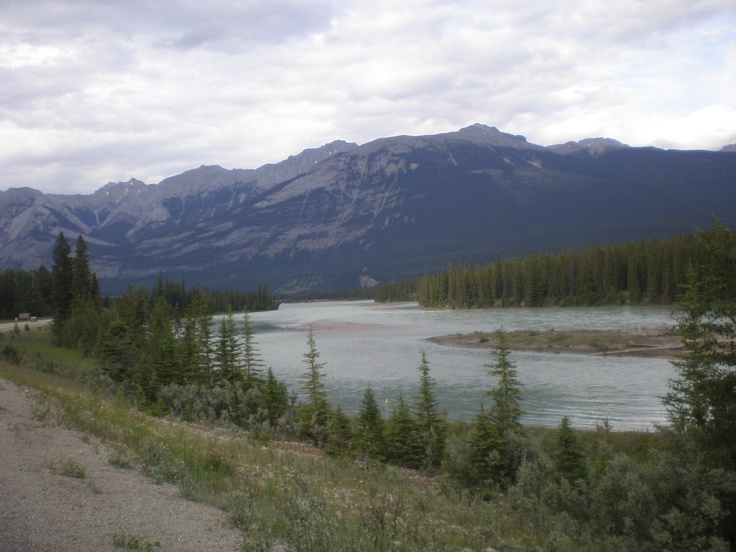 Such a great view @Jasper National Park, Alberta.