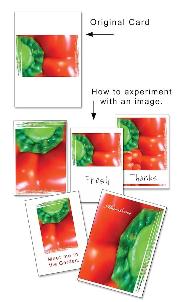 Greeting Card Designer: Video Meeting: How to Make a Series of Cards from one Image