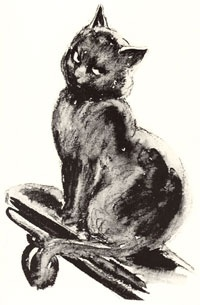 This is Fuzz Buzz my favourite of Norman Lindsay's cats. Fuzz buzz by Norman Lindsay