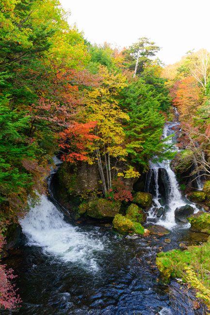 栃木県日光市の竜頭ノ滝。例年の見頃は10月上旬