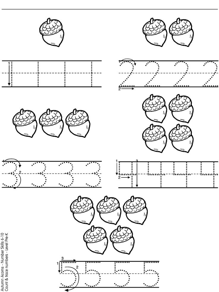 acorn numbers autumn Pinterest Number worksheets