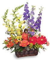 SUMMER'S END Basket of Flowers in Greensboro, NC | BLOSSOMS BY STROUD FLORIST