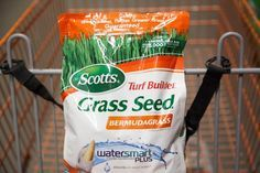 5 Steps of Scotts Lawn Care (with Pictures) | eHow
