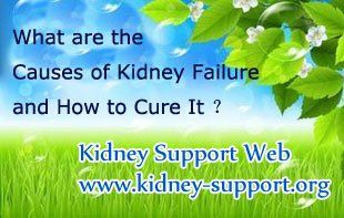 What are the Causes of Kidney Failure and How to Cure It