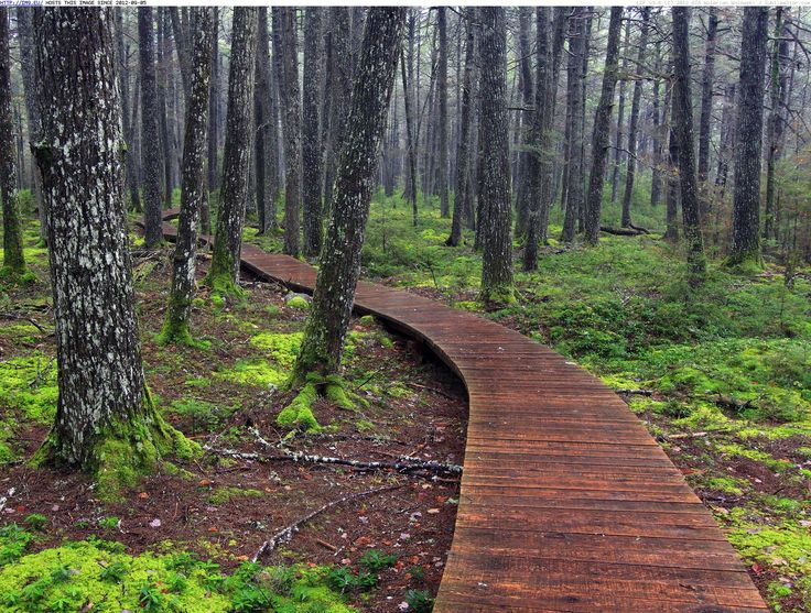 Kejimkujik National Park, Nova Scotia - Nowhere else in the country will you find a Parks Canada site that is designed as both a National Park and a National Historic Site #Hiking
