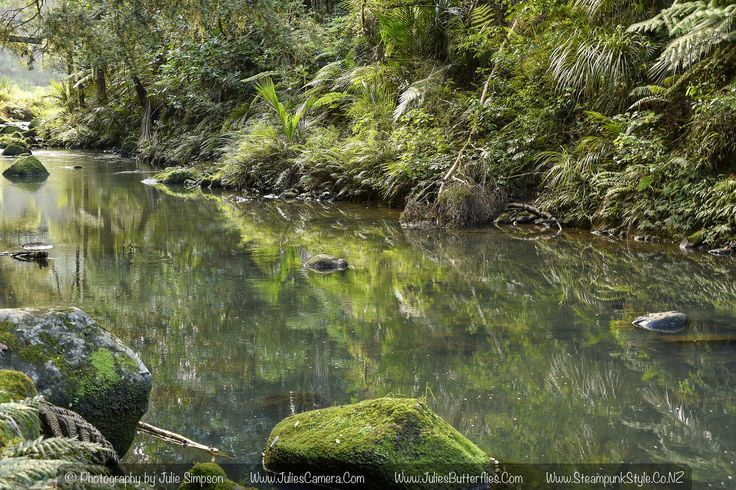 https://flic.kr/p/GBdYLB | Green stream reflections and rock