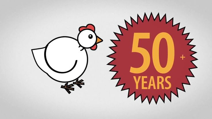 Alberta Chicken is Certified for Food Safety & Animal Care