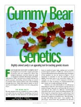 In this activity, gummy bears are placed in numbered paper bags with predetermined numbers of different colored bears to represent Mendelian and non-Mendelian ratios.