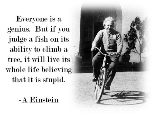 Everyone is a genius. But if you judge a fish on its ability to climb a tree, it will live its whole life believing it is stupid. -Albert Einstein