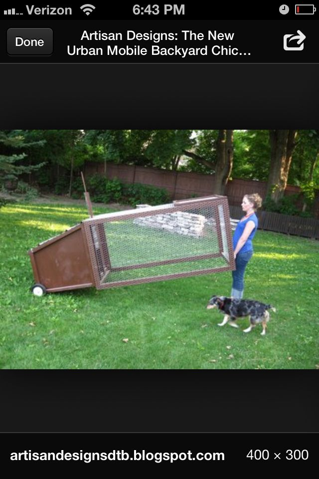 Cool moveable coop for smaller back yard.