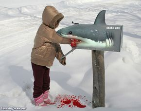 Funny Mailboxes   Funny Mailbox Pictures - Freaking News