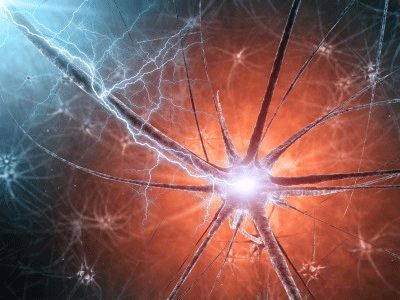 """Did you know that so-called """"incurable"""" neurodegenerative conditions such as Alzheimer's disease can be slowed, if not also partially reversed?"""