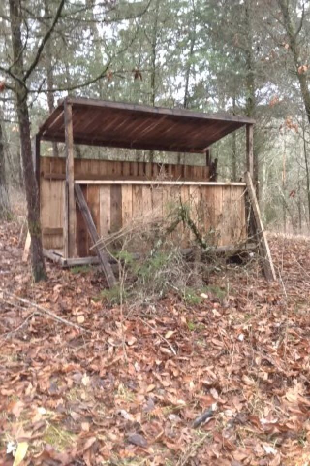 Deer hunting blind made from pallets! Free hunting blind!