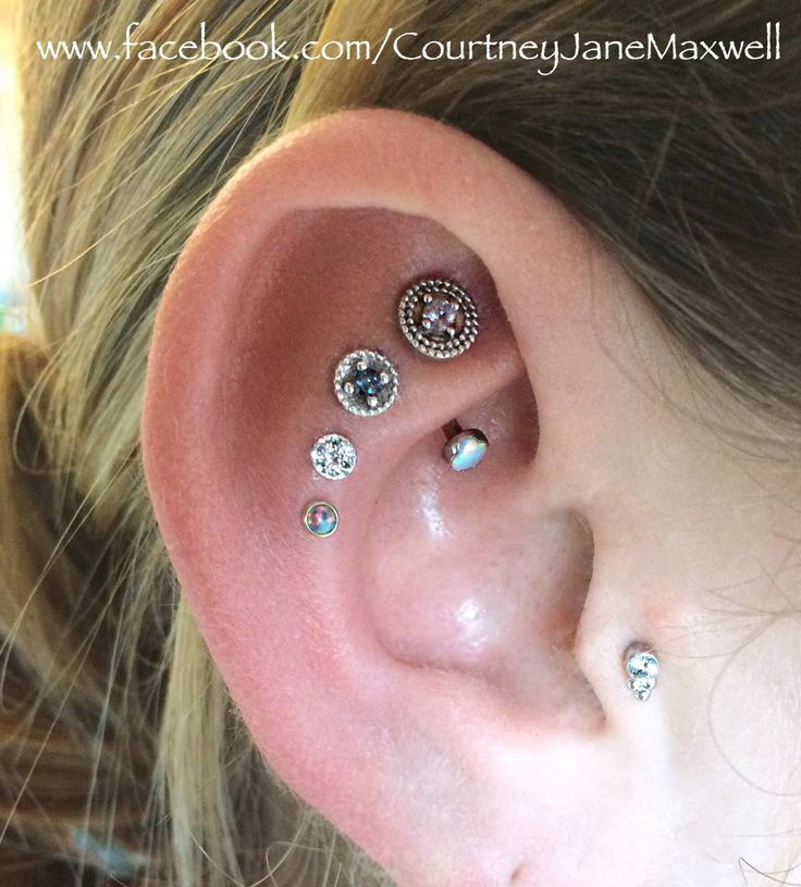 Triple cartilage piercing and rook piercing with awesome collection of 14k gold BVLA jewelry!