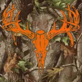 : Deer Deer, Country Stuff, Camo, Favorite Colors, Deer Hunt'S, 2 01 Deer Skull Jpg, Eft, Hunt'S Colors, Deer Stuff