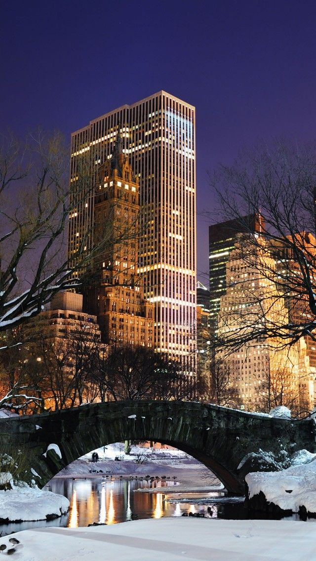 New York City at night from Central Park in the snow. #NYC