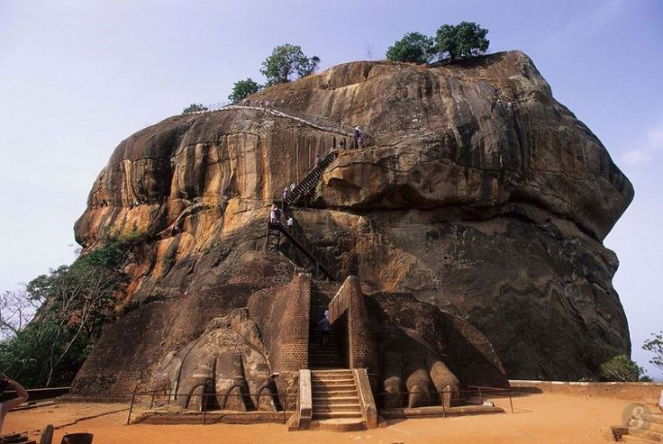 Sri Lanka le rocher du lion