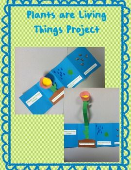 This is an art project that helps the students learn why plants are living things.: Help Students, Students Remember, Students Learning
