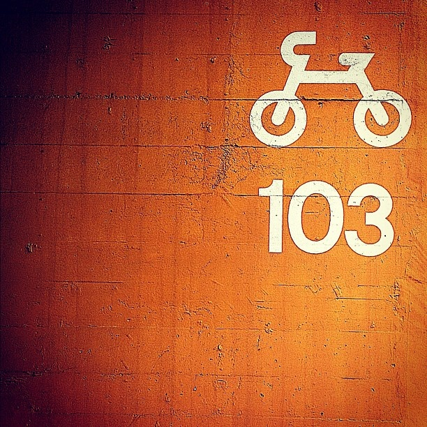 駐輪場・Parking area for bicycles. #blk_rocket #phtooftheday #bestoftheday #er_photo #ザ壁部