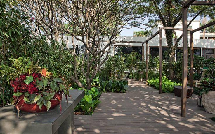 Jardim da Piscina - Pessuto Paisagismo. O paisagista Ricardo Pessuto assumiu o jasmim-manga, as palmeiras e a jabuticabeira do local como ponto de partida. Acrescentou vegetação com flores na parte mais ensolarada e optou, na área sombreada, por espécies como pacovás e asplênios. Para garantir a privacidade da piscina, ela foi abraçada por paredes de cobogós cimentícios. A iluminação também inova, localizada no topo das vigas de madeira.