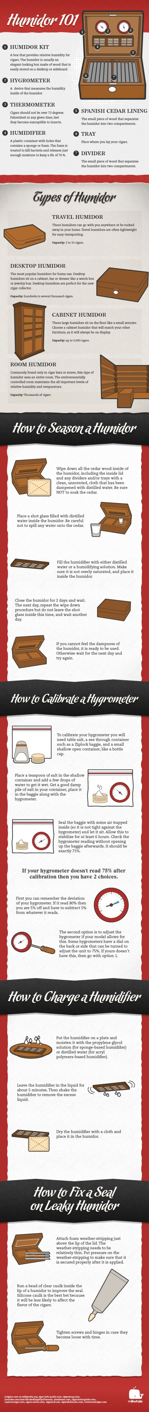 Types of Humidor Infographics