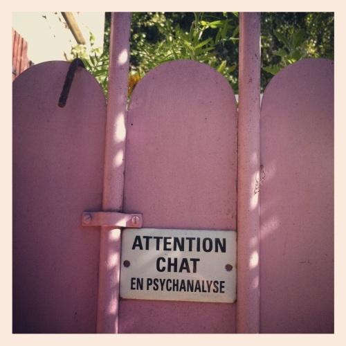 Villa Olivier Métra. Attention, chat en psychanalyse.