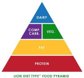 Lion Diet Type Food Pyramid