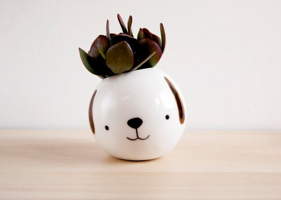 Small ceramic planter or plant pot with face, so cute and sweet. His name is Pepe and he is a round planter ready for care succulent plants which just need some water .You can plant your succulent directly inside the planter or use a little plastic pot. I recommend to plant the succulent directly to see how the hair of your planter grows, and grows.  This ceramic planter with face has been handmade in my little studio. I love so much create products with soul, who smile and who transports to…