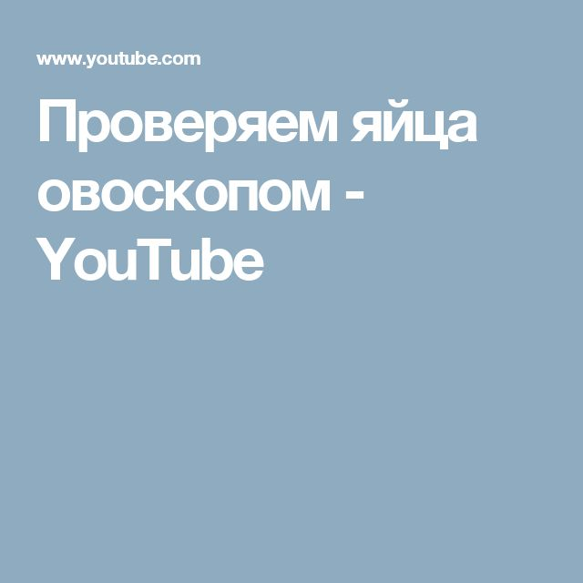 Проверяем яйца овоскопом - YouTube
