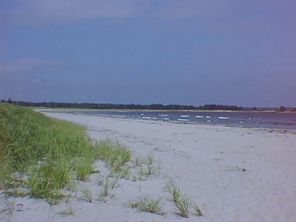 Beach Meadows...5 minutes from my house.