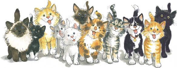 Love me some Suzy Zoo cats!