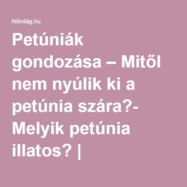 Petúniák gondozása – Mitől nem nyúlik ki a petúnia szára?- Melyik petúnia illatos? | Nőivilág.hu