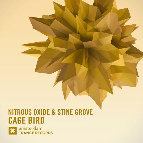 Nitrous Oxide \u0026 Stine Grove - Cage Bird (Original Mix) by RazNitzan | Raz Nitzan | Free Listening on SoundCloud