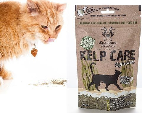 Attention #cat lovers check out our Facebook page to win #kelp care for your kitty