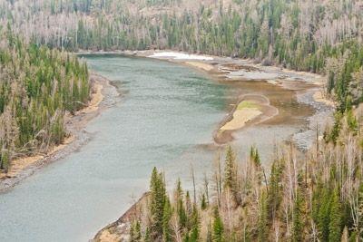 Top 10 Environmental Concerns of Today's Society