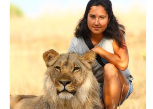 Learn how Zimbabwe takes care of its lions through the rehab and release program!