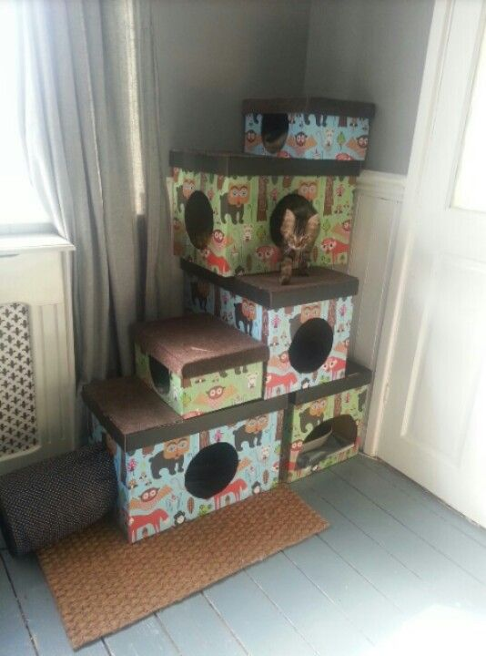 Convert gift boxes into a bed / hideout area. (attach with staple gun / glue or double sided tape - make sure nothing can hurt kitty)