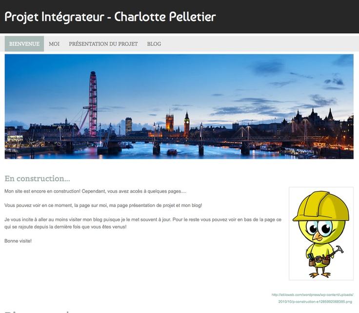 Charlotte Pelletier - Étude de marché et sondages en ligne - Londres - Angleterre