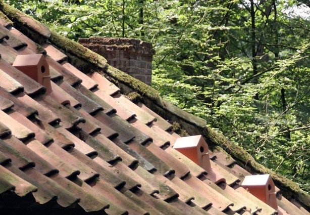 The shrinking bird population in urban settings led Netherlands-based product designerKlaas Kuikento designan archetype Birdhouse Rooftilethat replaces a standard ceramic roof tile.        The rooftop nesting place, composed of aspeciallydesigned removablebasket with access below, … Read More...
