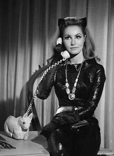 julie newmar catwoman | The Bat Channel!: Julie Newmar as Catwoman!