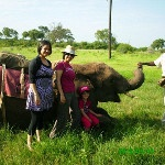 With my elephant Laduman in Vic Falls...