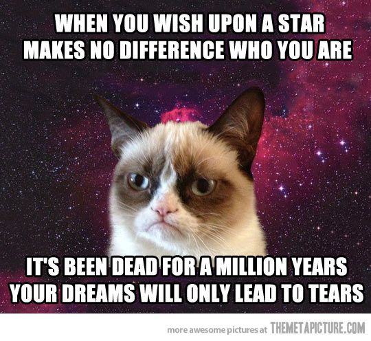 Grumpy Cat space star...
