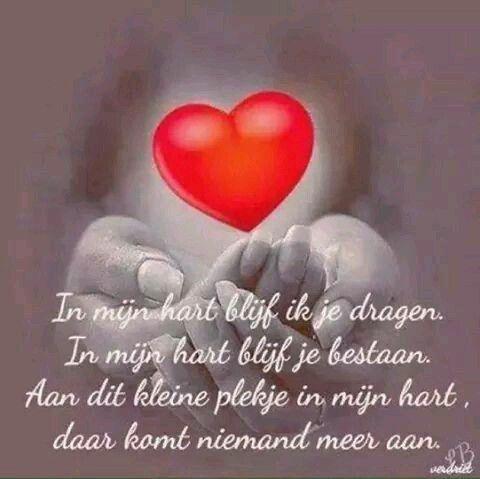 Plekje in mijn hart