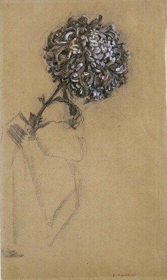 Piet Mondriaan, Chrysant, 1909.