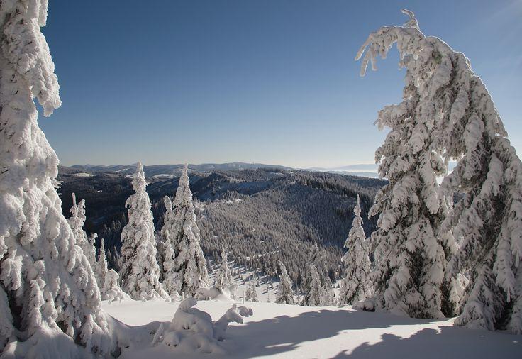 Photo Snow Paradise by Sebesan Mircea on 500px