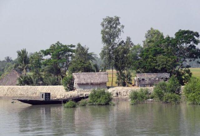 Планета Земля и Человек: Сундарбан и изменение климата: деревни уходят под ...