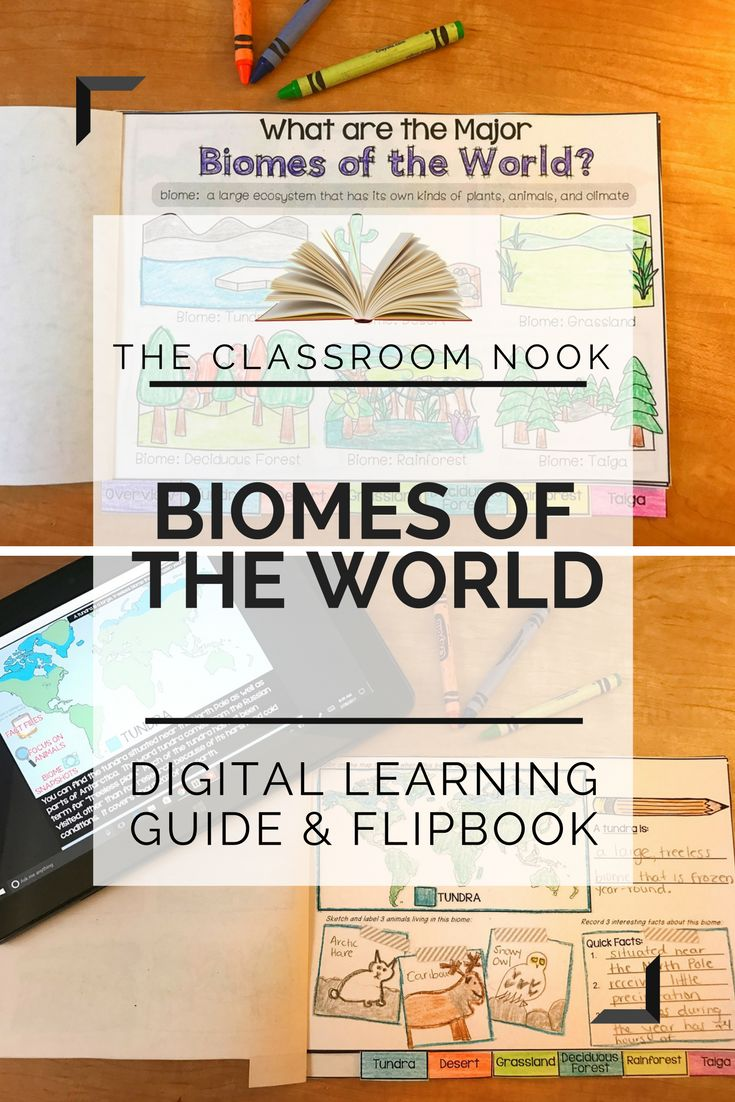 Best 92 using technology in the classroom images on pinterest link think digital guide biomes google classroom compatible fandeluxe Choice Image