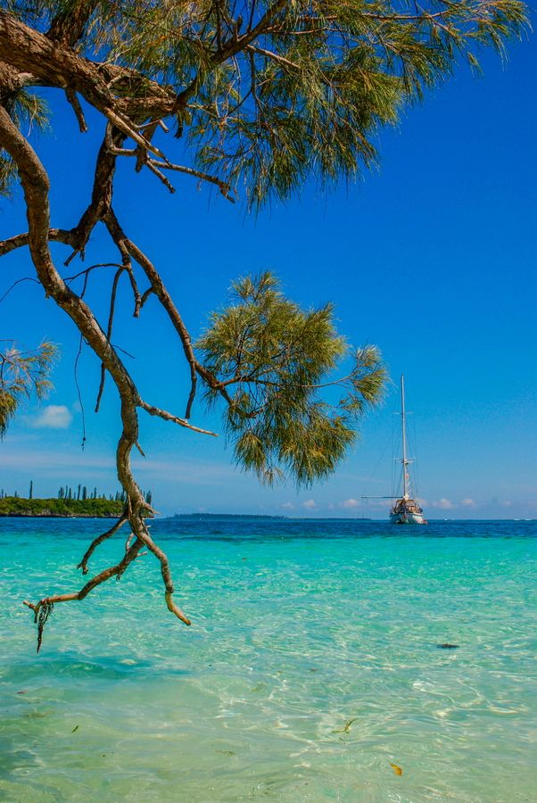 Isles of Pines, New Caledonia -oh, how I want to see this place.