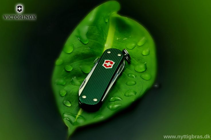 Title: Victorino Classic Alox Green (Denmark) Models: Leaf, Victorinox Classic Alox Green (Danish Version) Photographer: www.nyttigbras.dk  #nature #jylland #danmark #beauty #leaf #træning #løb #sport #design #model #outdoor #portrait #green #victorinoxswissarmy #gadgets #travel #nofilter #art #travelling #victorinox #jagt #awesome #like4like #copenhagen #sonderborg #phaseone #sak #knives #post #lifestyle